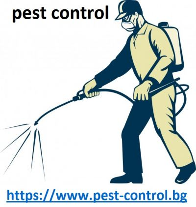 All Possible Information About pest control